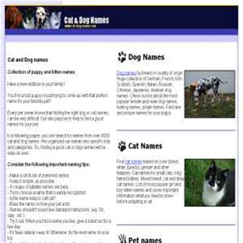country puppy names cat kitten puppy and names pets animals pets suggestions for naming your