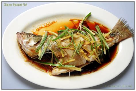 fish cuisine steamed fish aromaticdining