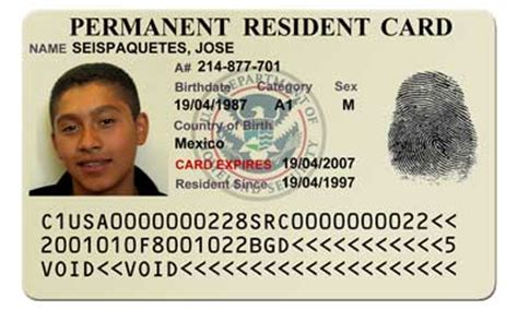 resident green card template invader charged with immigration documents