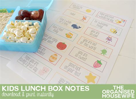 lunch box planner the organised housewife shop lunchbox notes the organised housewife shop