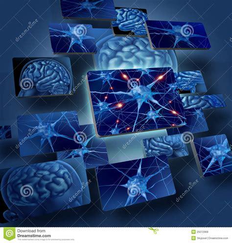 imagenes libres cerebro conceptos de las neuronas del cerebro fotos de archivo
