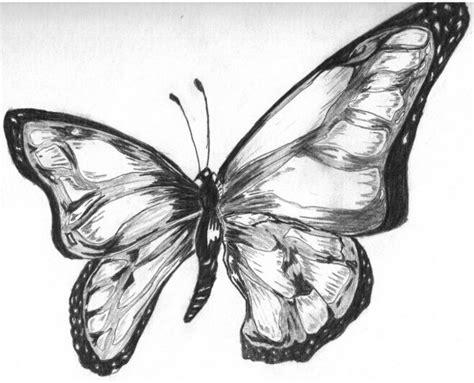 imagenes de mariposas a lapiz dibujos a lapiz de mariposa imagui