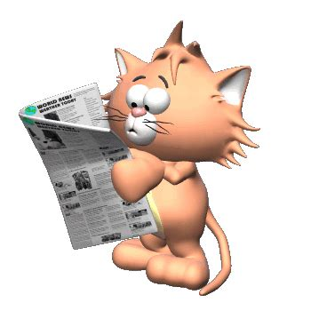 kucing baca koran