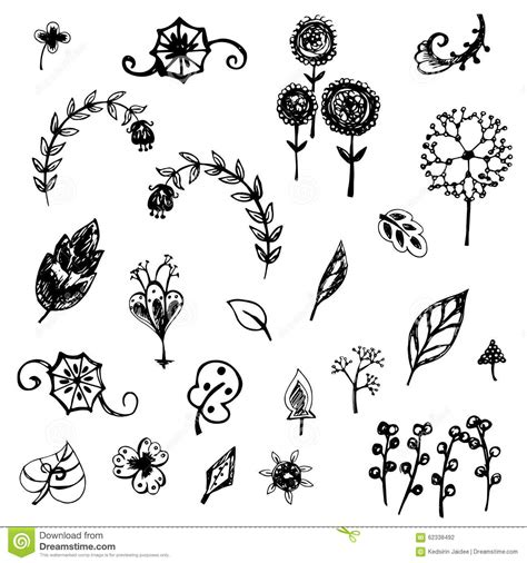 doodle draw free flower and leaves sketch vector stock vector image