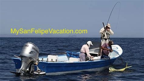 baja mexico boats panga fishing baja fishing and fishing tips for san felipe
