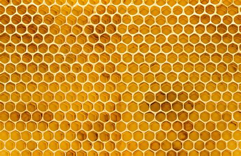 Honey Comb Honeycomb honeycomb texture wallpaper mural murals wallpaper