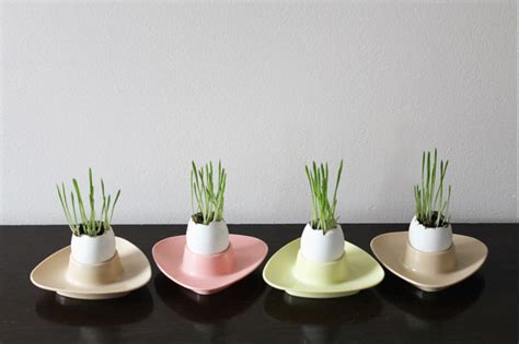 Eggshell Planters by Just For The Of It Growing Grass In An Eggshell