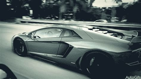 car automobile gif find & share on giphy