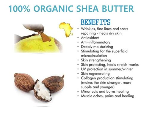 best shea butter for skin 36 best shea butter black soap images on
