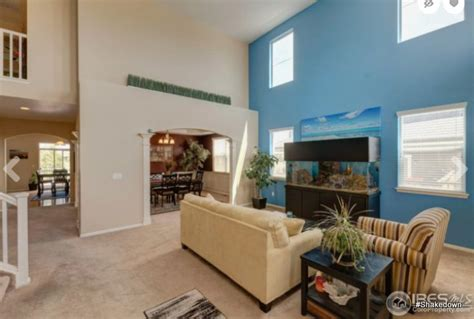 blueprint  interior  watts home shakedown