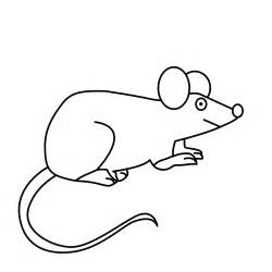 mouse colors coloring pages animals free downloads