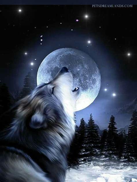 Wolf And Moon wolf moon wolves wolf moon wolf and moon