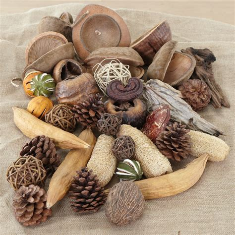 nature materials buy natural materials collection 30pcs tts