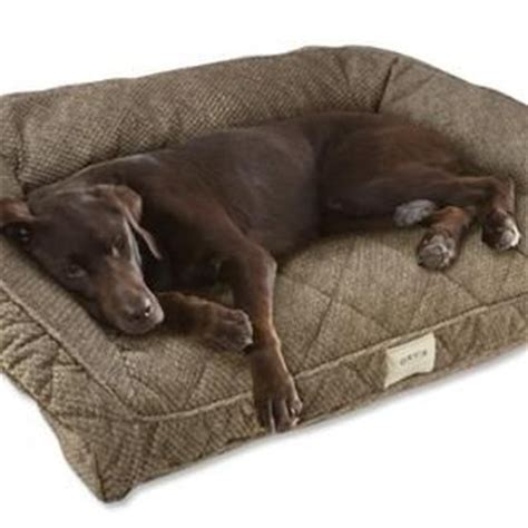 dog bed for large dog bolster dog beds for large dogs