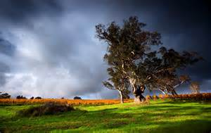 trees colorful landscape landschaft clouds daylight himmel sunshine wallpaper hires bullsh ft