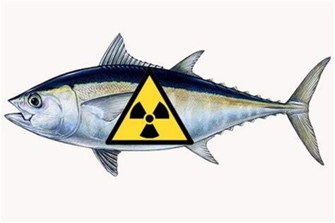 Cesium 134 Detox by Fukushima Du Poisson Au C 233 Sium Dans Des Supermarch 233 S