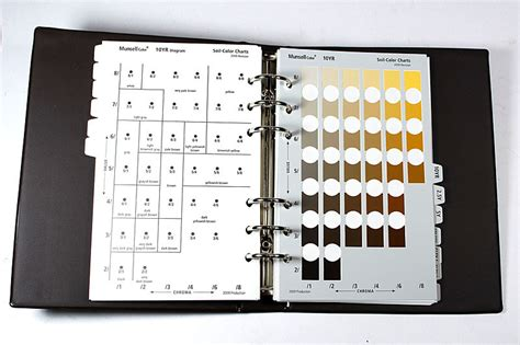 soil color chart munsell soil color charts sureserv engineering sdn bhd