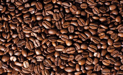 coffee bean wallpaper for walls coffee beans wall paper mural buy at europosters