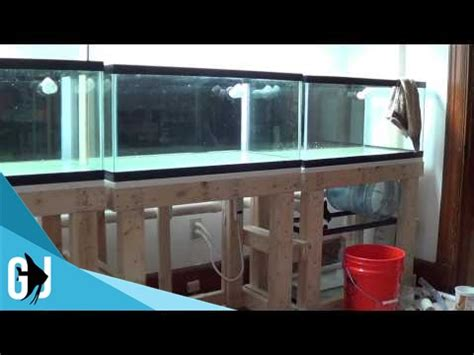 Fish Room Build by 152 One Step Backward For The Fish Room Build Update Monday