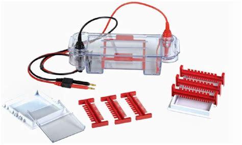 Gell Box mini gel box mini size horizontal gel box for dna rna