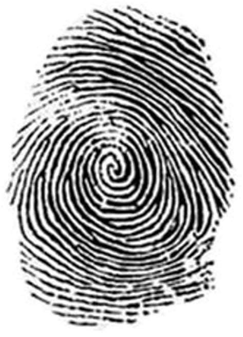 Finger Print Background Check 10 Facts About Dna Fingerprinting Fact File