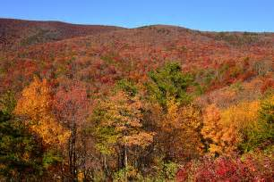 blue ridge parkway fall colors blue ridge parkway in fall colors flickr photo