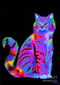 colorful cats colorful watercolor cat pictures to pin on