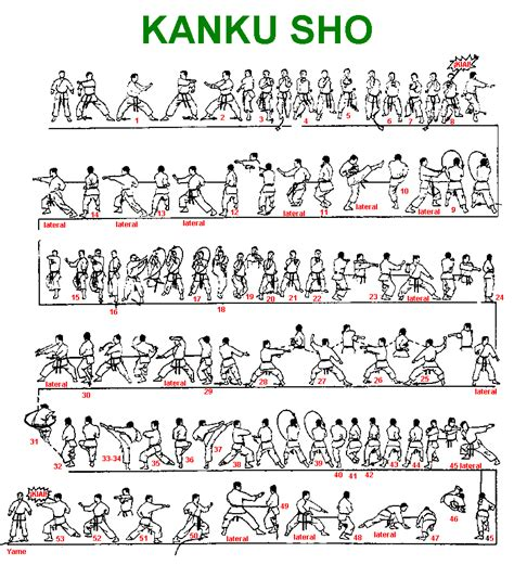 the kata and bunkai of goju ryu karate the essence of the heishu and kaishu kata books shotokan katas martial arts martial