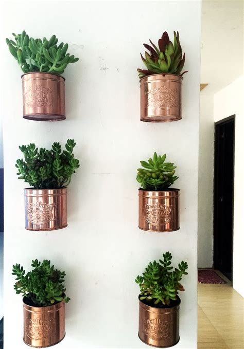 wall herb planter diy ice cream tin can wall planters indoor plants