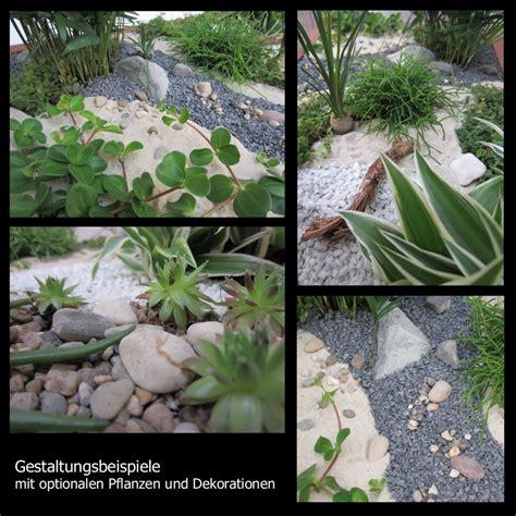 garten pflanzen versand minigarten einen miniatur zimmer garten gestalten