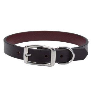 puppy harness petsmart 17 best images about collars harnesses leashes on pet accessories for