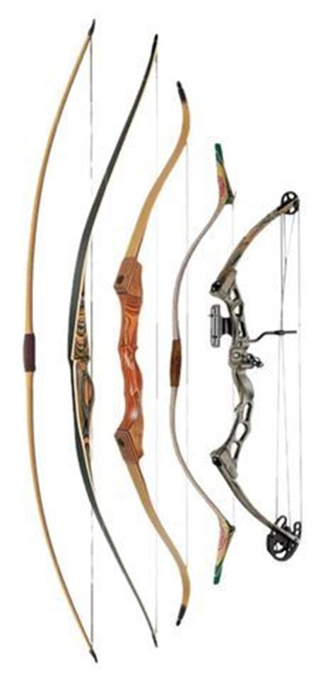 hoyt vector blackout compound bow | survival/apocalypse