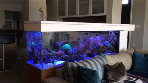 How To Make An Kitchen Island 200 gallons living reef aquarium room divider side 1