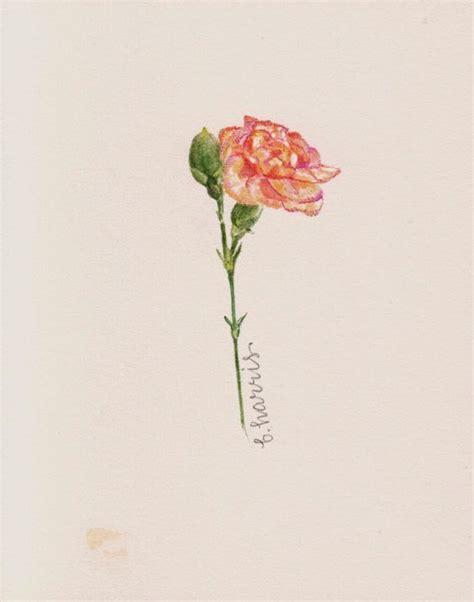 tattoo carnation flower carnation flower tattoo pesquisa google inspiration s