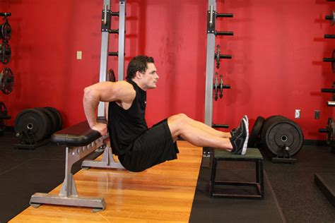 bench dips exercise guide and video