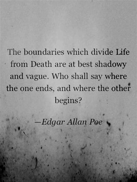 edgar allan poe a biography by daniel dyer 560 best images about edgar allan poe on pinterest peter