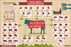 useful beef chart picture explanation