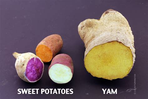 what color are sweet potatoes s monologue on sweet potatoes and yams colin