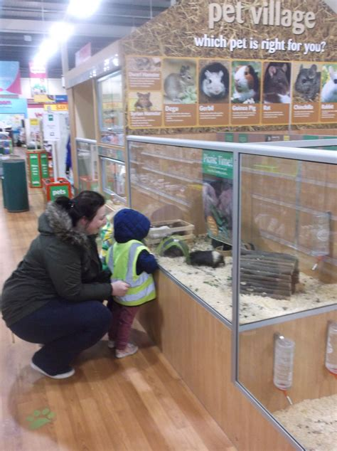 pets at home driverlayer search engine