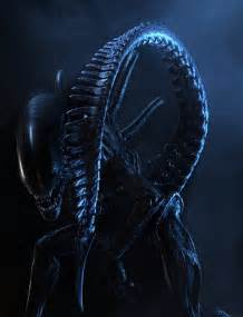 1000 images aliens amp predators