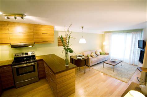 modern apartments modern kitchen living room