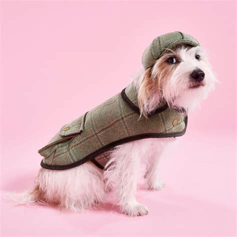 design dog jacket chadwick dog jacket stylish designer dog raincoats