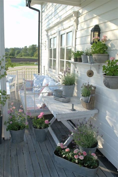 immergrüne pflanzen für sonnige standorte idee balkon beleuchtung