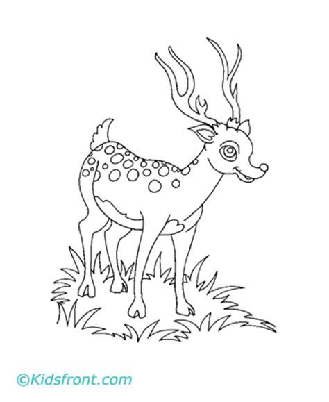 deer tracks coloring pages deer track coloring pages