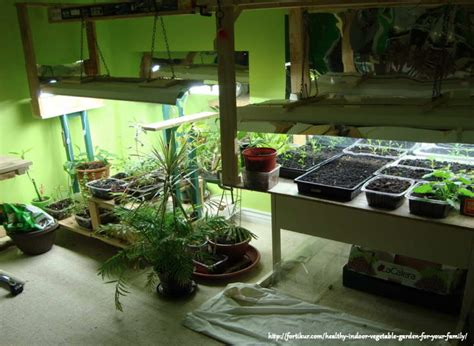 indoor light garden how to select the best grow light for indoor growing
