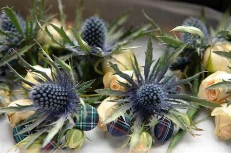 scottish themed wedding flowers  cherry topped ceilidh
