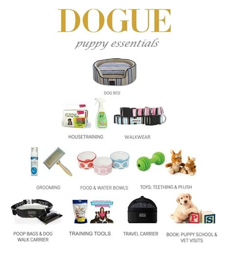 what you need for a puppy checklist 49 best images about it s a dogs on pets pug photos and park