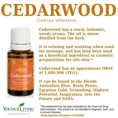 Youngliving Essential Cedarwood 15ml living essential oils cedarwood visit my website for more information or to order http