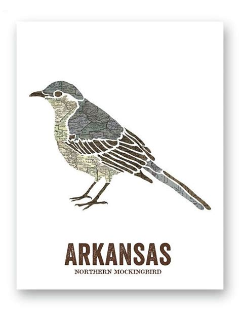 northern mockingbird arkansas state bird nature print