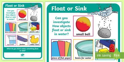 What Is Floating And Sinking by Science Floating And Sinking Investigation Prompt Display